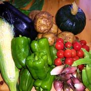 旬の野菜おまかせ宅配