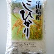 富山県産コシヒカリ
